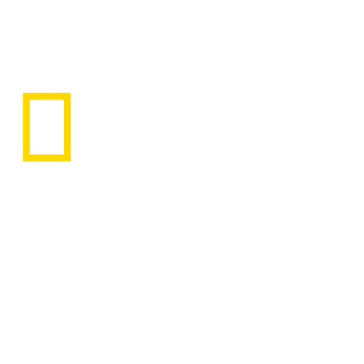 National Geographic Wild logo