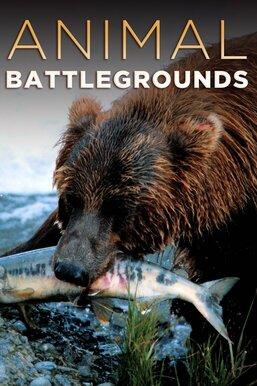 Animal Battlegrounds