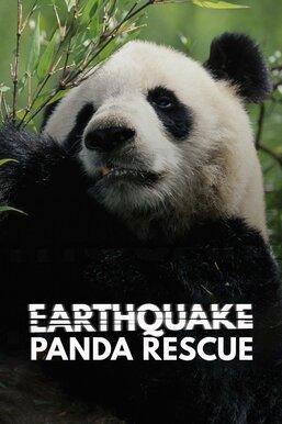 Earthquake: Panda Rescue