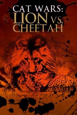 Lion vs Cheetah