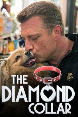 The Diamond Collar