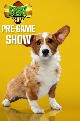 Puppy Bowl XIV Pre-game Show