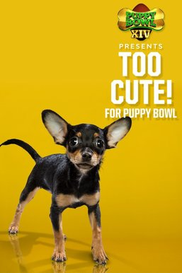 Puppy Bowl XIV Presents: Too Cute! For Puppy Bowl