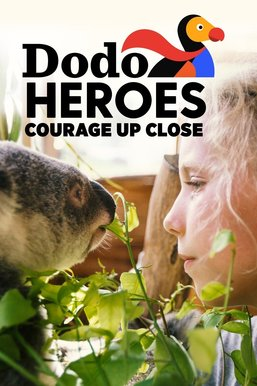 Dodo Heroes: Courage Up Close
