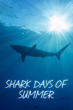 Shark Days of Summer