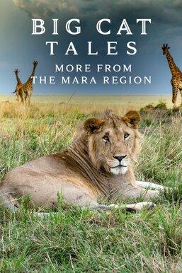 Big Cat Tales: More From the Mara Region