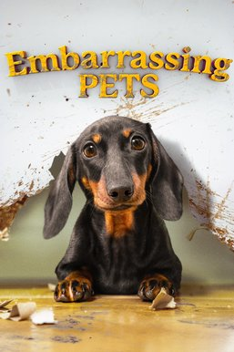 Embarrassing Pets