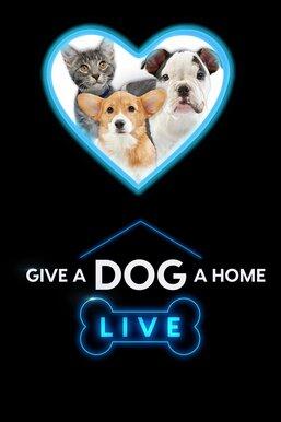 Give A Dog A Home Live!