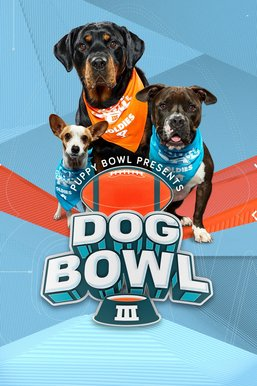 Puppy Bowl XVI Presents: The Dog Bowl III