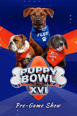 Puppy Bowl XVI Pre-Game Show