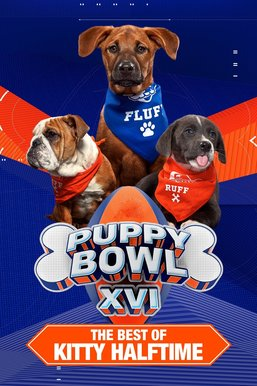 Puppy Bowl XVI Presents: The Best of Kitty Halftime