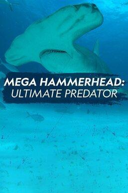 Mega Hammerhead: Ultimate Predator