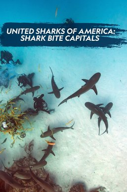 United Sharks of America: Shark Bite Capitals
