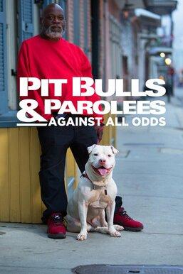 Pit Bulls & Parolees: Against All Odds
