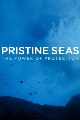 Pristine Seas: The Power of Protection