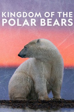 Kingdom of the Polar Bears