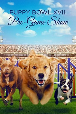 Puppy Bowl XVII: Pre-Game Show