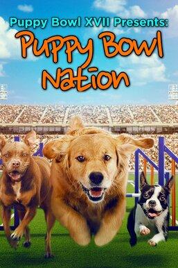 Puppy Bowl XVII Presents: Puppy Bowl Nation
