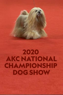2020 AKC National Championship Dog Show
