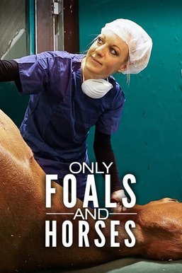 Only Foals and Horses