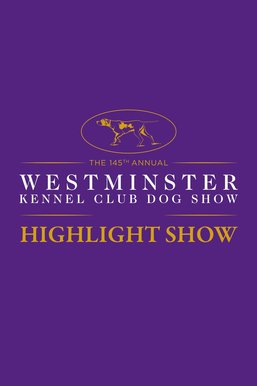 Westminster Kennel Club Highlight Show