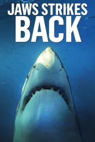Jaws Strikes Back