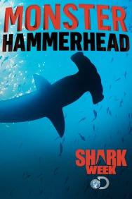 Monster Hammerhead