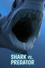 Tiburones vs. Depredadores