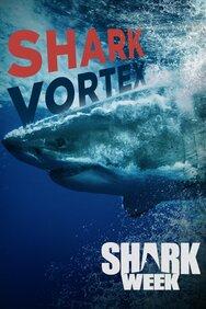 Shark Vortex