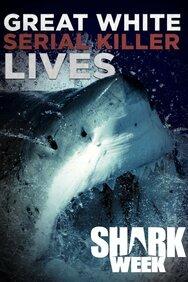 Great White Shark Serial Killer Lives