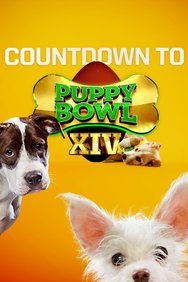 Countdown to Puppy Bowl