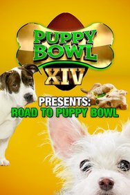 Puppy Bowl XIV Presents: Road to Puppy Bowl