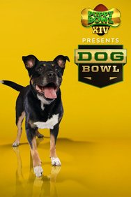 Puppy Bowl XIV Presents: The Dog Bowl