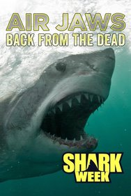 Air Jaws: Back From the Dead