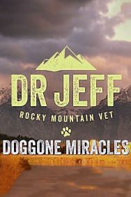 Dr. Jeff: Doggone Miracles