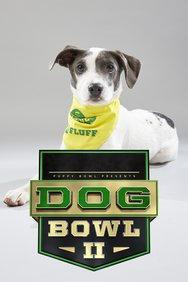 Puppy Bowl XV Presents: The Dog Bowl II