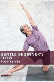 Gentle Beginner's Flow