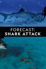 Forecast: Shark Attack