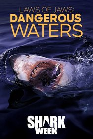 Laws of Jaws: Dangerous Waters