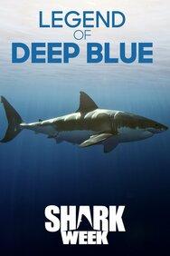 Legend of Deep Blue