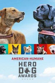 2019 American Humane Hero Dog Awards