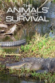 The Animals' Guide to Survival