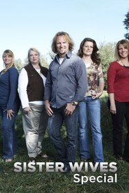 Sister Wives Special