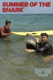 Summer of the Shark