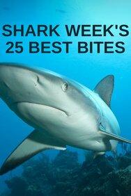 Shark Week's 25 Best Bites
